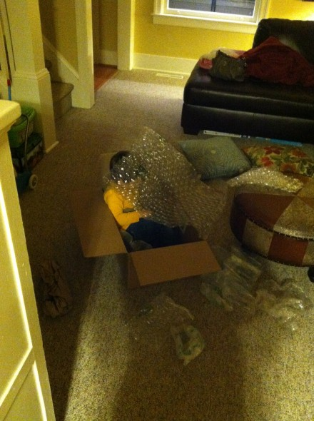 A large shipping box and lots and lots of bubble wrap.